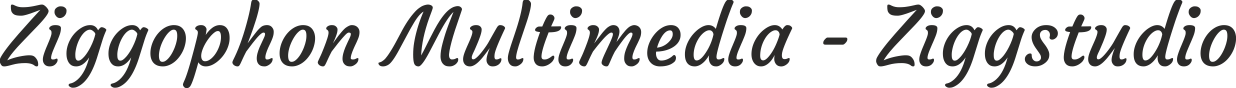 ziggophon ziggstudio logo